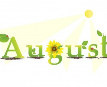 August Review 🌻 🌴 🐚